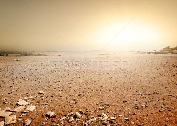 Desert in Egypt Stock photo © Givaga