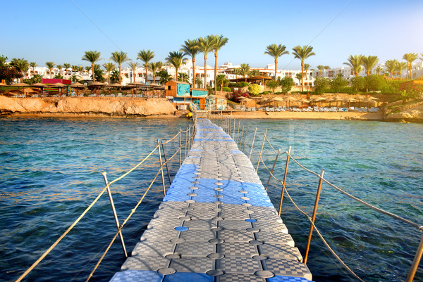 Pontoon to the sea Stock photo © Givaga