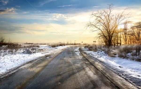 Road in winter Stock photo © Givaga