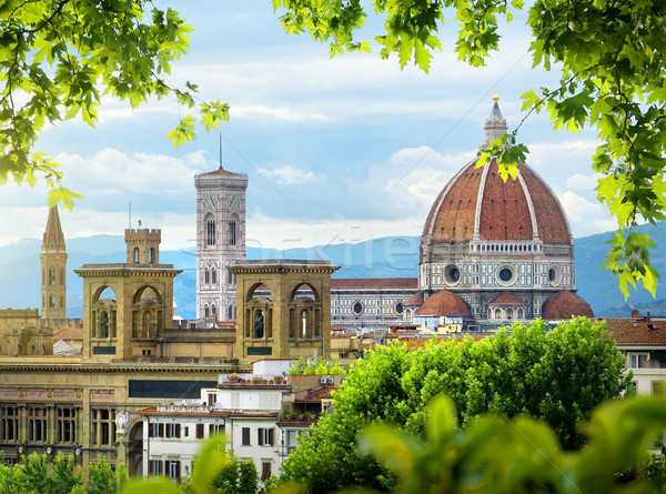 Dome of Florence Stock photo © Givaga