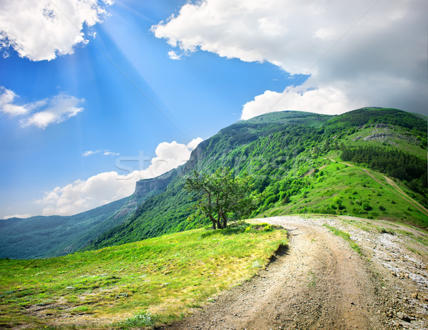Country road in mountains Stock photo © Givaga