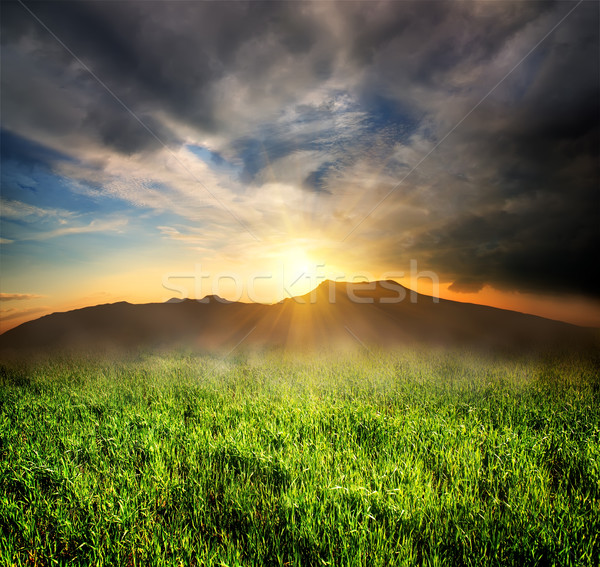 Grama verde montanhas campo pôr do sol natureza montanha Foto stock © Givaga