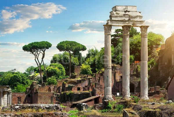 Római fórum Olaszország romok Róma város Stock fotó © Givaga