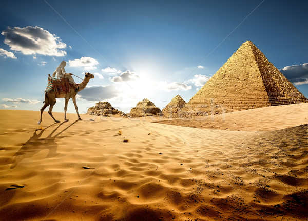 In sands of Egypt Stock photo © Givaga