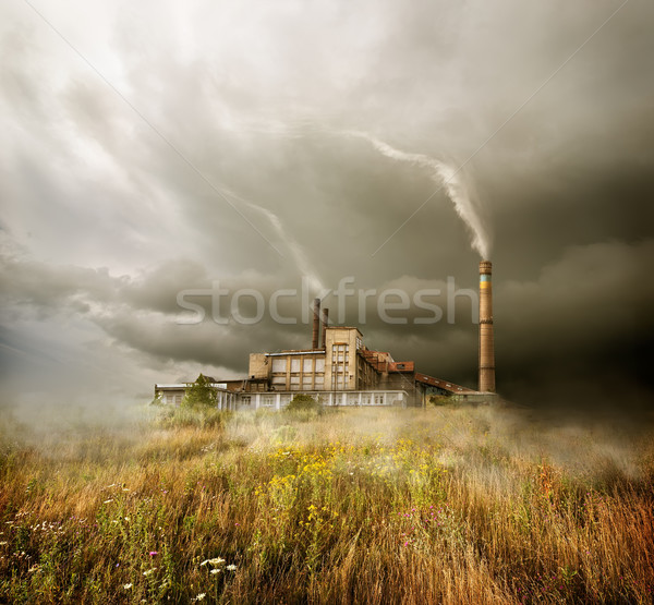 Plant and cloudy sky Stock photo © Givaga