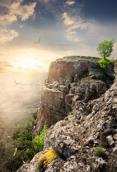 горные плато большой птиц закат небе Сток-фото © Givaga