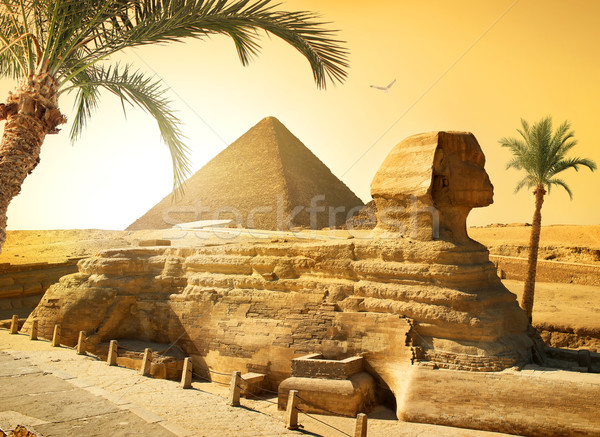 Sphinx and palms Stock photo © Givaga