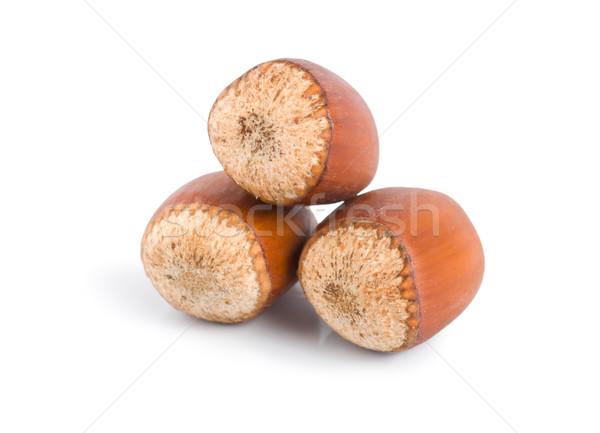 Three hazelnuts Stock photo © Givaga