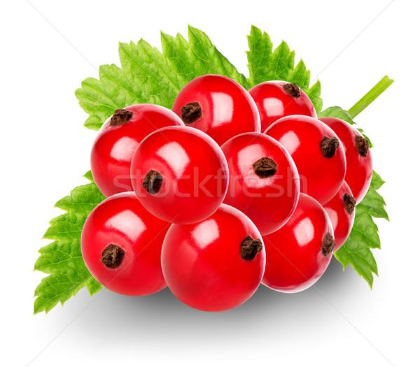 Vermelho groselha isolado branco folha Foto stock © Givaga