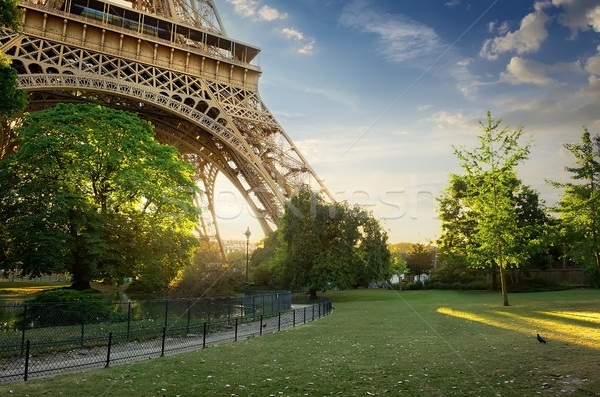 Pelouse Tour Eiffel vert Paris sunrise France Photo stock © Givaga