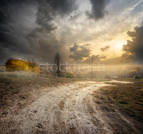 Сток-фото: тумана · осень · трава · дороги · закат