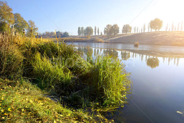 Otono río amanecer cielo árbol madera Foto stock © Givaga