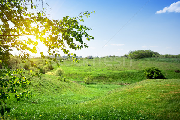 Suburban landscape Stock photo © Givaga