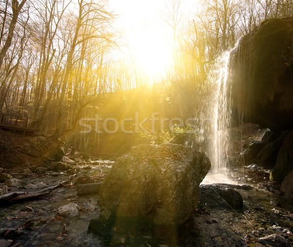Cascade bois ensoleillée matin eau printemps Photo stock © Givaga