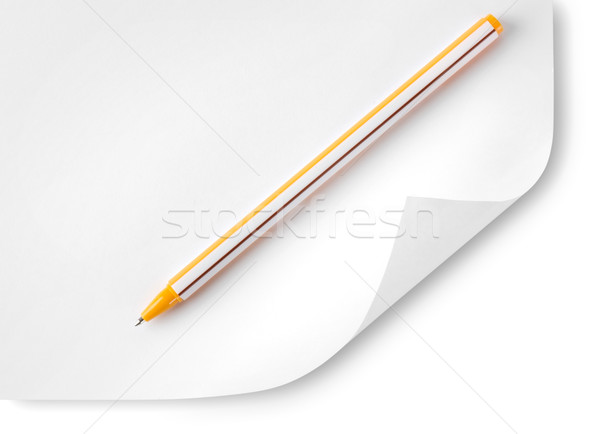 Paper and ballpoint pen Stock photo © Givaga