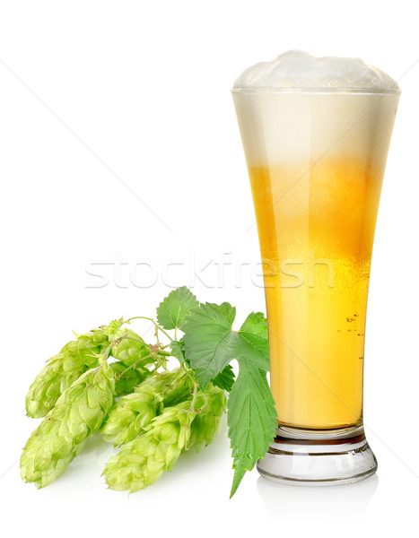 Salto isolado branco cerveja natureza Foto stock © Givaga