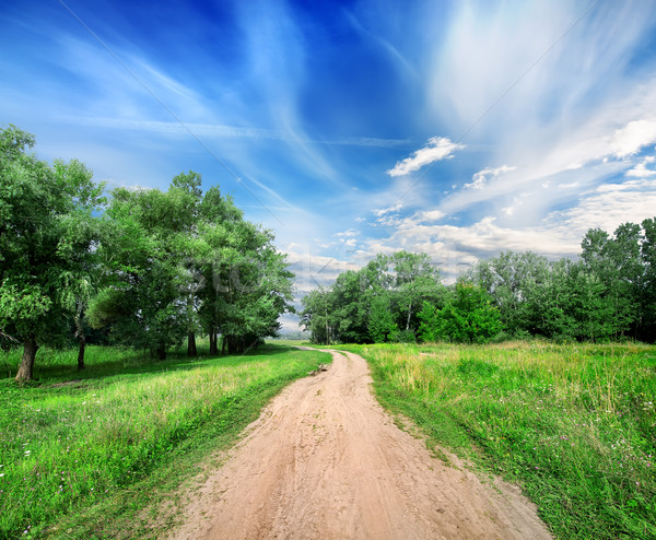 Country road Stock photo © Givaga