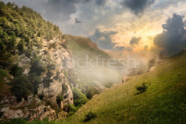 Oiseaux roches brouillard sunrise ciel nuages Photo stock © Givaga
