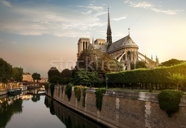 Sunset over Notre Dame Stock photo © Givaga