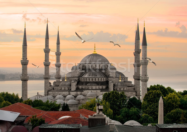Blue Mosque and Bosphorus Stock photo © Givaga