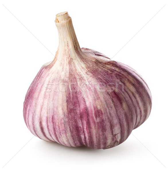 Purple garlic Stock photo © Givaga