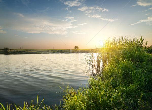тихий реке закат поздно лет цветок Сток-фото © Givaga