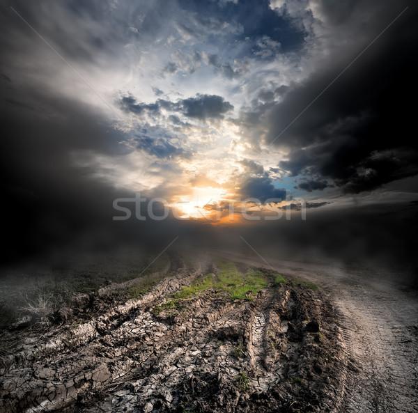 тумана грязи закат весны трава Сток-фото © Givaga