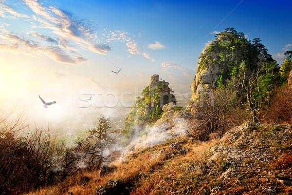 Kuşlar büyük sonbahar sabah güneş Stok fotoğraf © Givaga