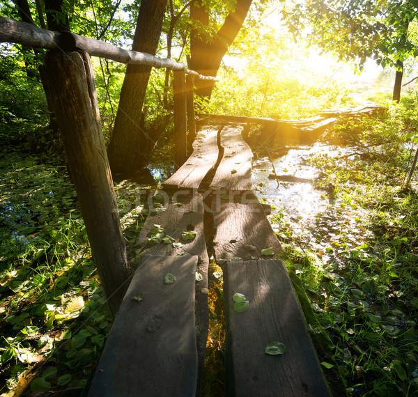 Sun over little bridge Stock photo © Givaga
