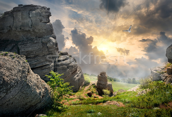 Machtig vogels zonsondergang hemel wolken Stockfoto © Givaga