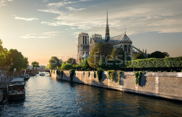 Notre-Dame in the morning Stock photo © Givaga