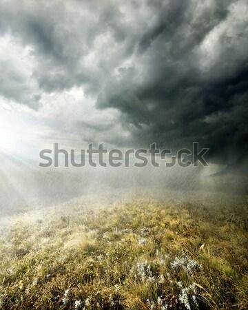 Felhők ősz mező köd égbolt kék Stock fotó © Givaga