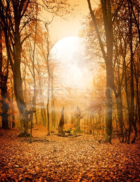 Stockfoto: Najaar · bos · maan · bladeren · communie · afbeelding