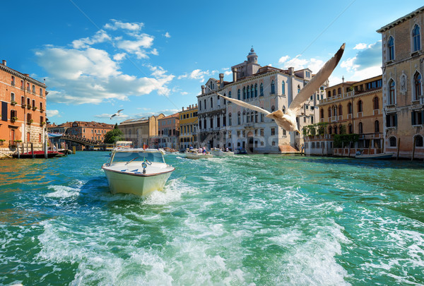 Boats in Venice Stock photo © Givaga