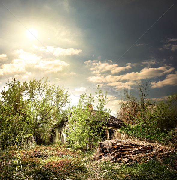 Old collapsed house Stock photo © Givaga