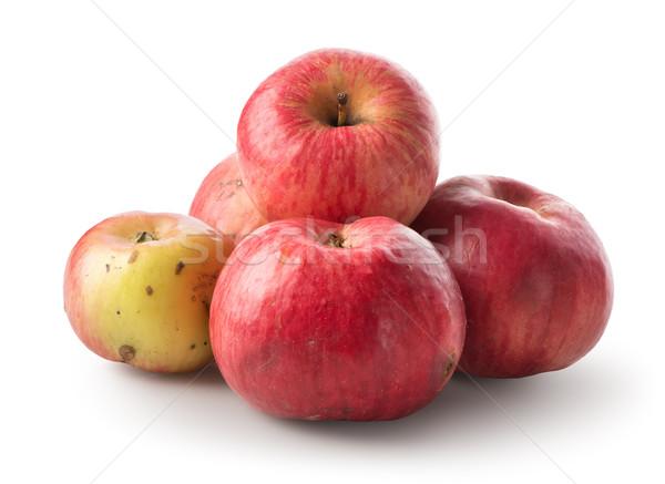 куча яблоки изолированный белый яблоко фрукты Сток-фото © Givaga