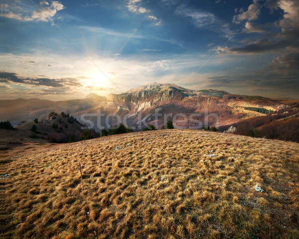 Meadow in the Mountains Stock photo © Givaga
