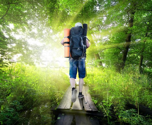 Viajante ponte pequeno verde floresta água Foto stock © Givaga