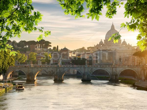 Puente vaticano puesta de sol edificio hojas Foto stock © Givaga