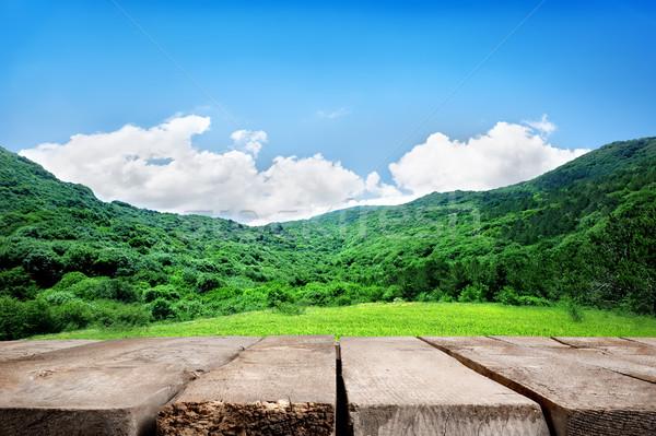 Hegyek fapadló legelő kék ég égbolt tavasz Stock fotó © Givaga