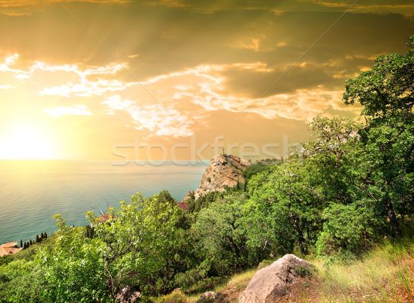 Montagna all'alba acqua foresta tramonto mare Foto d'archivio © Givaga