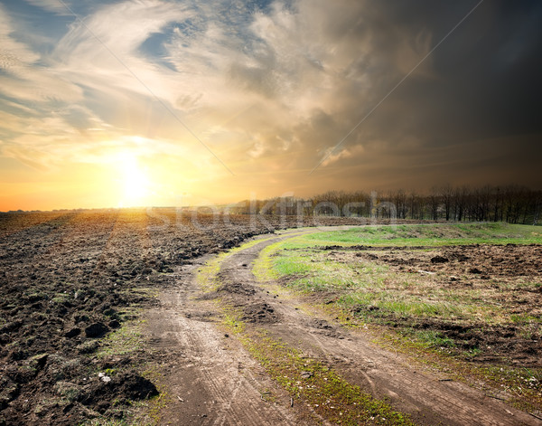 Country road and plowed land Stock photo © Givaga