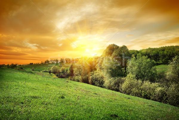 Forêt colline coucher du soleil ciel arbre soleil Photo stock © Givaga