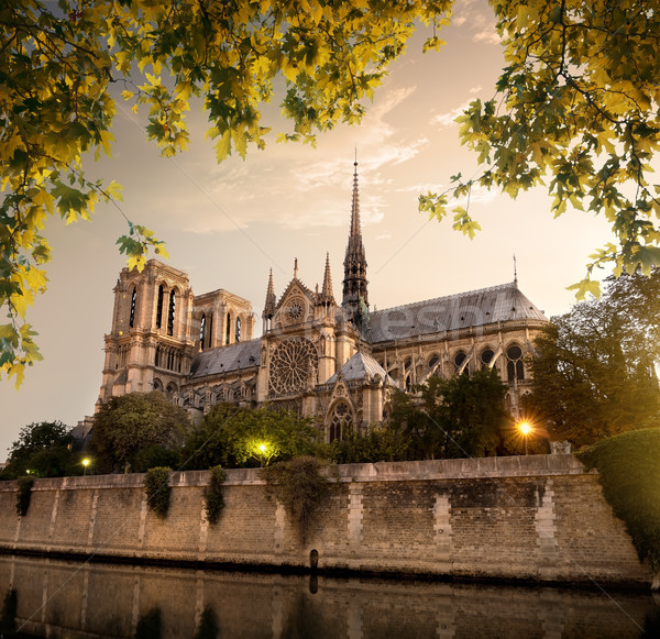 Notre Dame in Paris Stock photo © Givaga