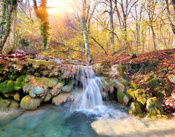Kaskada górskich rzeki lasu jesienią drzewo Zdjęcia stock © Givaga