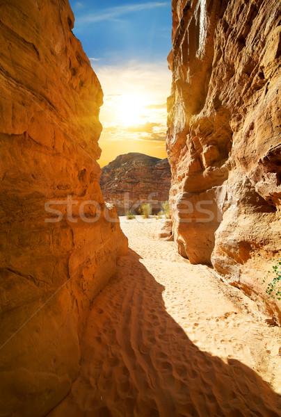 Desfiladeiro deserto nuvens grama natureza Foto stock © Givaga