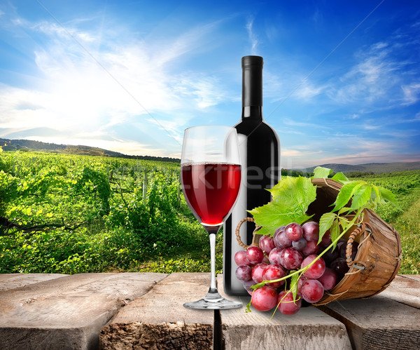 Red wine and vineyard Stock photo © Givaga