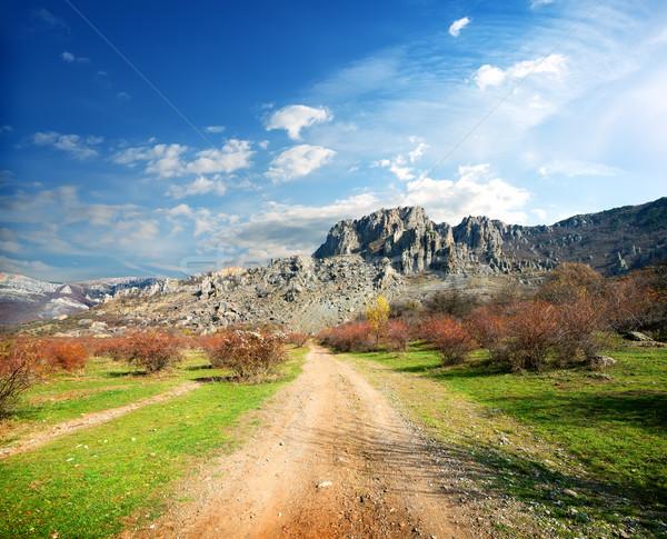 Road to the mountains Stock photo © Givaga