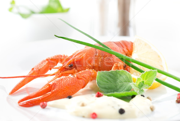 Red crayfish Stock photo © Givaga