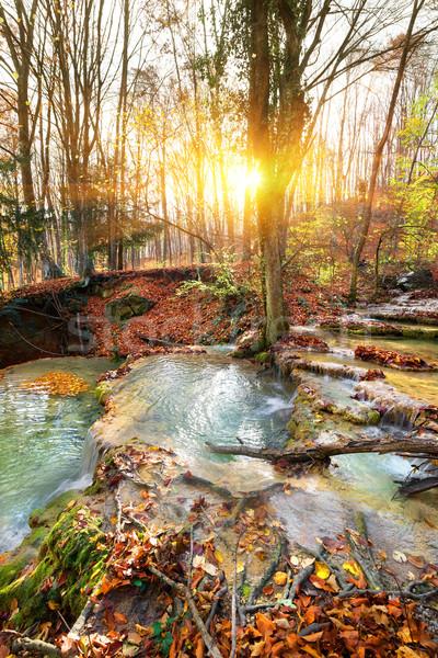 Kaskade Fluss Berg Wald Herbst Baum Stock foto © Givaga